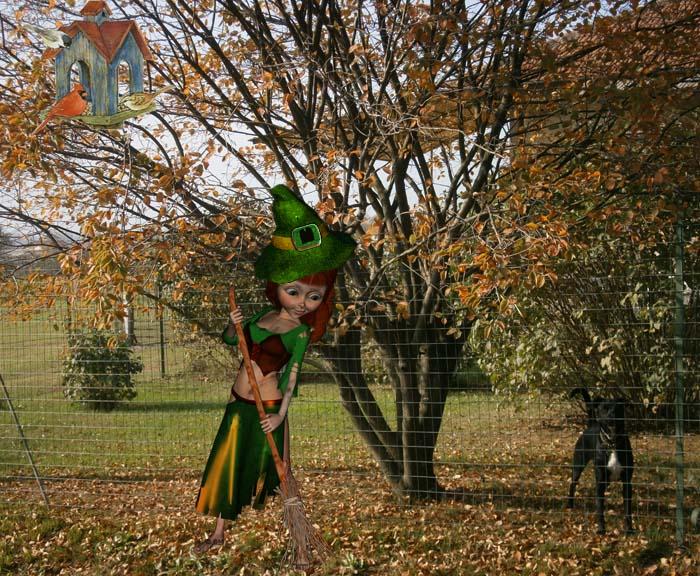 L'elfo pellegrino che spazza