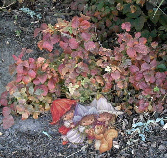 Gli gnomi delle foglie
