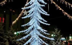 L'albero scintillante