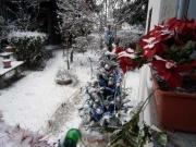Albero di Natale in giardino