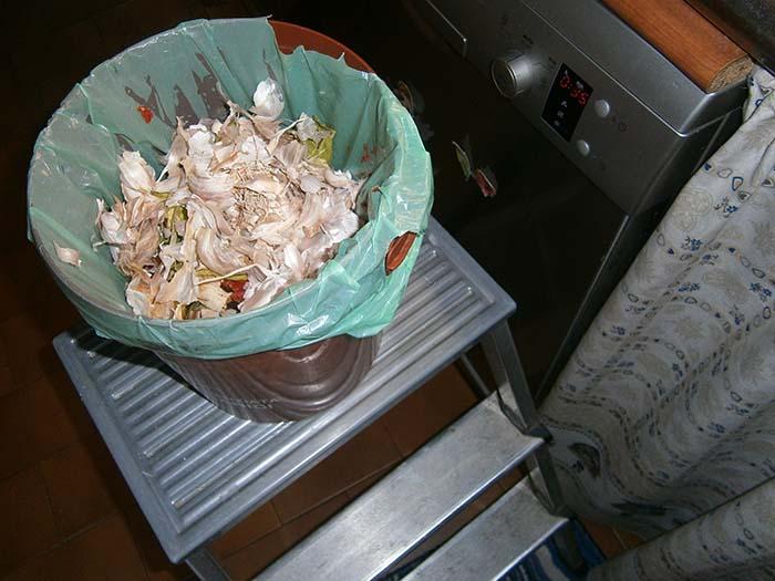 Sollevare il cestino dell'organico