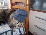 Un cappello per Brio!