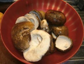 Cappelle dei funghi