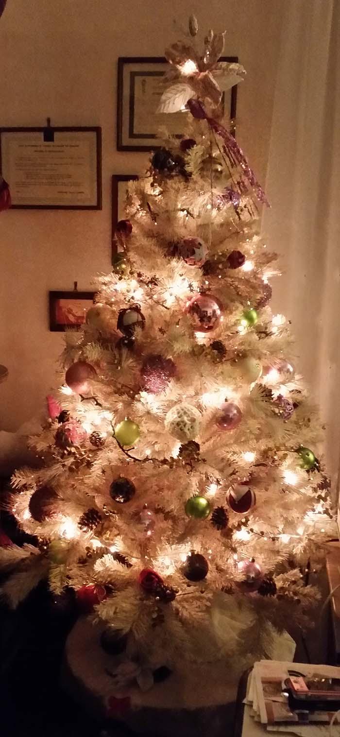 L'albero panna