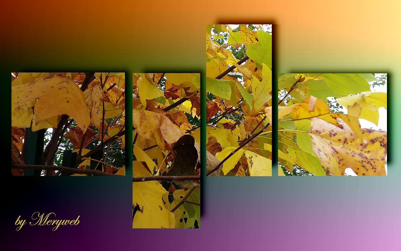 quadro pannelli violet fall